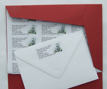 Double Size Self-Adhesive Address Labels
